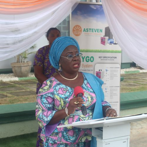 Dr Yetunde Onanuga Deputy Governor, representing the State Governor